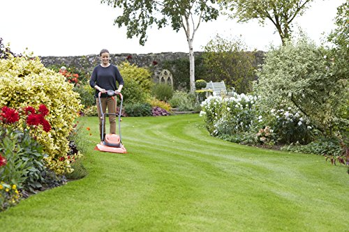 Flymo Turbo 400 Electric Hover Lawn Mower 1500 W