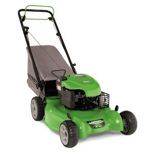 Lawn Boy 10641