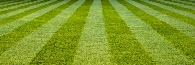 Creating The Perfect Lawn Stripes The Lawn Mower Guru